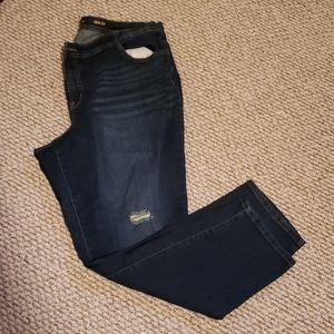 Style and Co plus size dark wash denim